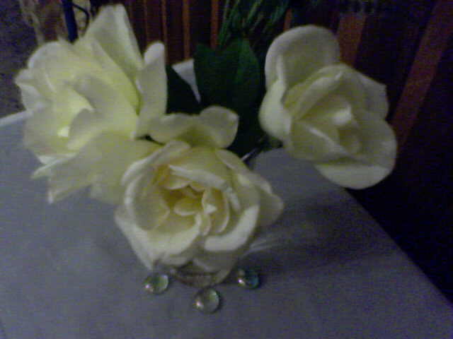 20110303034919-16-01-11-143mis-rosas-bettybadaui.jpg