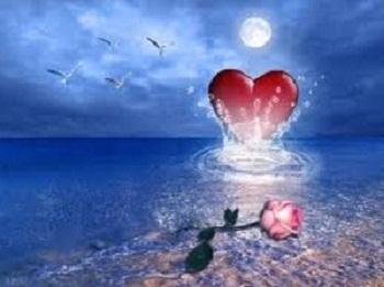20131102231459-rosa-y-corazon.jpg