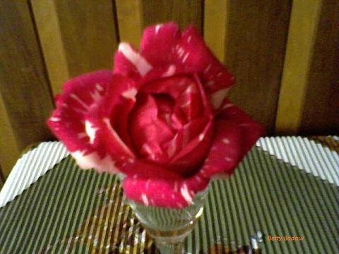 20140102060509-30-06-09-143-2-florymadera-betty-b-2.jpg