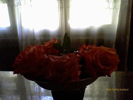 20140801052819-30-10-10-132atardeciendo-foto-bettybadaui-2.jpg