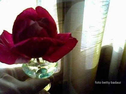 20141003054834-26-06-09-180-mis-rosa-betty-badaui.jpg