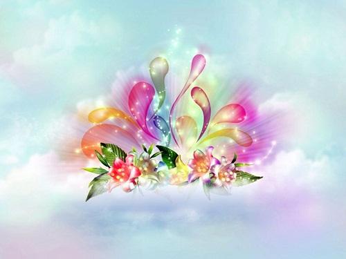 20150202073941-flores-20del-20cielo-800.jpg
