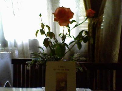 20100201064034-16-01-10-144-1-librosantiagobao.jpg