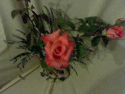 20100305025110-15-01-10-202-1-mis-rosas-bettybadaui.jpg