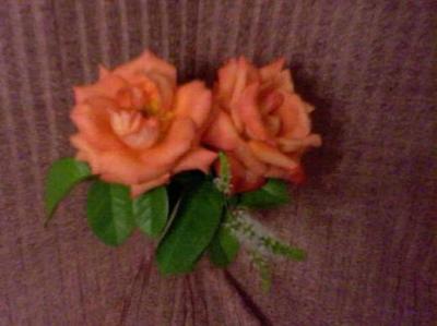 20100501084617-06-02-10-130-1-mis-rosas-betty-badaui-.jpg