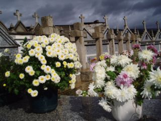 20110703015911-flores-cementerio.jpg