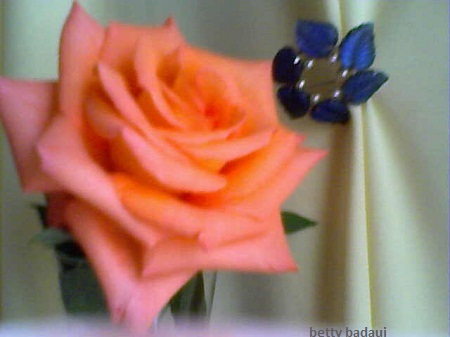 20120602034015-19-04-12-143betty-badaui-mis-rosas....jpg