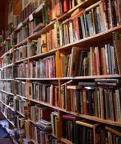 20120902012800-bibliotecas.jpg