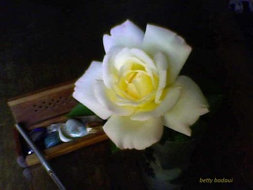 20140402000850-16-03-14-144mis-rosas-betty-badaui....jpg